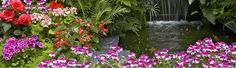 zen garden wallpaper iphone 640 x 1136 Garden Wallpaper, Landscape Wallpaper, Watercolor Landscape, Iphone Wallpaper, Garden Photos, Background Pictures, Amazing Flowers, Landscape Design, Flower Landscape