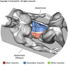 CRUNCH WHITH HEEL TOUCH - The exercise involves the rectus abdominis and in particular the upper part. It is harder tha the crunches exercise. Lower Ab Workouts, Gym Workouts, At Home Workouts, Muscle Fitness, Mens Fitness, Fitness Tips, Sport Motivation, Fitness Motivation, Sixpack Workout
