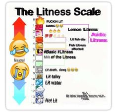 Image result for Litness