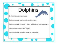 free printables, DIY crafts and resources about dolphins for an ocean theme! #preschool