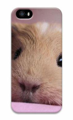 Guinea pig 2 3D Case Personalized custom iphone 5S covers for Apple iPhone 5/5S Case for iphone 5S/iphone 5,http://www.amazon.com/dp/B00KF26OX0/ref=cm_sw_r_pi_dp_-MWGtb0JQTZ93R6J