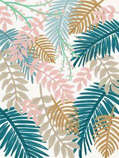 Tropical leaf illustration