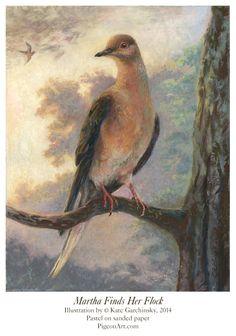 PenguinArt Illustration by Kate Garchinsky : Birds
