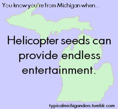 You Know You're From Michigan When you know what helicopter seeds are.they are everywhere and every Michigander kid has spent time playing with them/throwing them Michigan Facts, State Of Michigan, Detroit Michigan, Lake Michigan, The Mitten State, Michigan Travel, Upper Peninsula, Mackinac Island, Great Lakes