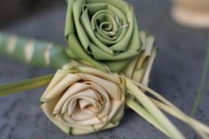 palm roses