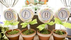 Lollipops in pots at a Peter Rabbit baby shower! See more party planning ideas at CatchMyParty.com!