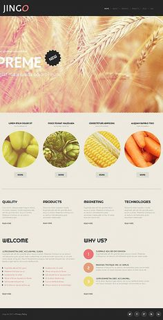 Stop looking for one, who will do a website for you. Construct a website yourself, meeting your needs and budget with this Agriculture HTML Website Template ( Agriculture Business, Modern Agriculture, Agriculture Industry, Agriculture Farming, Agriculture Machine, Web Design Software, Html Website Templates, Marketing Technology, Medicinal Plants