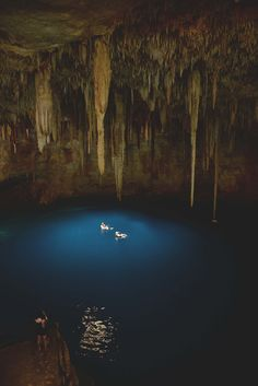 Quick guide to exploring the Cenotes of Quintana Roo region of Mexico
