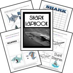 FREE Shark Lapbook - Frugal Homeschool Family