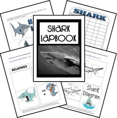 FREE Shark Lapbook - Frugal Homeschool Family