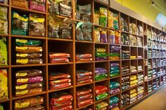 pet store - Google Search