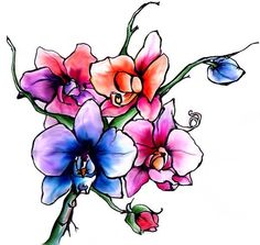 Floral Tattoo Design. Ink and Watercolour on Paper. 2009.