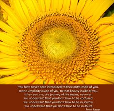 You have never been introduced to the clarity inside of you. Prem Rawat, Words of Peace - www.tprf.org