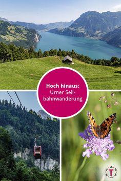 Wanderlust, Trail, Hiking, Places, Mountain, Mini, Switzerland, Train Trip, Hiking Trails