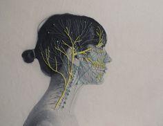 L'artiste chilienne Juana Gomez imprime des photos en noir et blanc de morceaux de corps humains sur des tissus avant de broder dessus avec des fils colorées des illustrations anatomiques qui montrent les vaisseaux sanguins, les nerfs, etc.