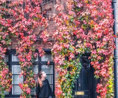 Where to find fall foliage in London: the very best spots to see autumn in London, England Great Fire Of London, The Great Fire, Roof Gardens London, Christmas Things To Do, London Instagram, London Attractions, Europe Travel Guide, Travel Guides, Sky Garden