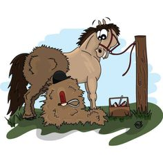 My horse Cowboy looks I skinned a Shetland Pony! Does anyone else feel this way when their horse is shedding? Funny Horse Pictures, Funny Horses, Horse Love, Horse Girl, Horse Cartoon, Comic, Horses And Dogs, Horse Quotes, Horse Tack