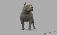 pit bully by Sudhakar Venkat on ArtStation. Cute Baby Animals, Animals And Pets, Funny Animals, Wild Animals, Dog Sculpture, Animal Sculptures, Dog Anatomy, Animal Anatomy, Anatomy Study