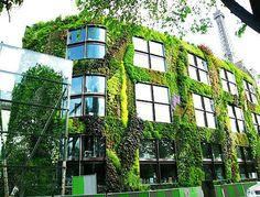 7 Benefícios da arquitetura ecológica - http://www.casaprefabricada.org/7-beneficios-da-arquitetura-ecologica