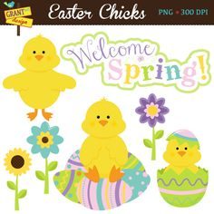 Easter Chicks Clipart  Easter Clip Art  por GrantAvenueDesign, $5.00
