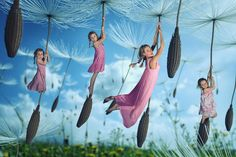 Spring is in the air • John Wilhelm is a photoholic