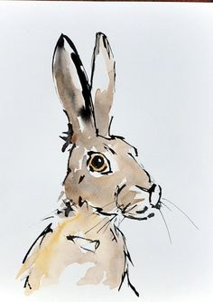 Hare - Ink and mixed media Painting by Suzy Sharpe - www.suzysharpe.co.uk