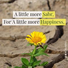 """Sabr is precious; Allah is with you when sabr is in you"" Islamic Quotes Sabr, Hadith Quotes, Islamic Teachings, Allah Quotes, Muslim Quotes, Religious Quotes, Hindi Quotes, Quran Quotes Inspirational, Wise Quotes"