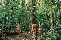 #adventure Staying with an Amazonian tribe | Tourism in the Amazon, Photo 11 of 15 (Condé Nast Traveller)