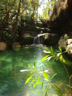 The emerald natural pool in Isalo Natural Park, Madagascar (by huxley1312). - See more at: http://visitheworld.tumblr.com/post/59226332774/the-emerald-natural-pool-in-isalo-natural-park#sthash.P0RlsuM9.dpuf