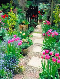 Spring garden with simple path. Spring is the time of year of gardens