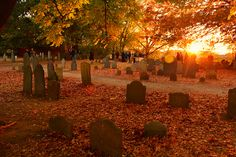 miss-halloween: taphophilia: Historical Salem going here in a little over a month! Halloween Horror, Fall Halloween, Vintage Halloween, Happy Halloween, October Country, Old Cemeteries, Graveyards, Autumn Scenes, Autumn Aesthetic
