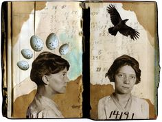 kim lindvall. murder of crows. 2013. collage.