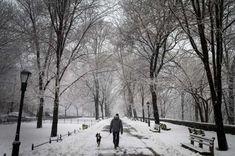 Manhattan, New York City, USA - Reuters/Mike Segar