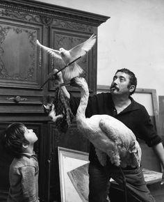 "Robert Doisneau // Pigeon trainer ( photo from the book "" L'enfant et la colombe"", 1970s"