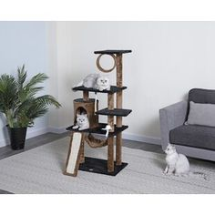 Cat Trees & Condos You'll Love in 2019 Cat Tree Condo, Cat Condo, Kittens Playing, Cats And Kittens, Quiet Cat, Pet Ramp, Sisal Rope, Condo Decorating, Kitten Love