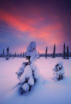 Novembers Snow, Alaska Landscape, USA, by Wolfhorn, on flickr.