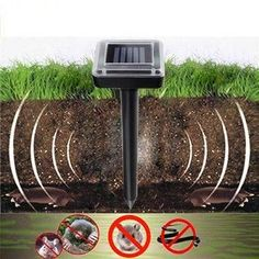 Use this solar powered pest repeller to keep moles, gophers, voles, badgers, mice and snakes away from your lawn, gardens and yards forever!Easy installation. Safe and clean. Unltrasonic and solar technology, without using dangerous toxi...