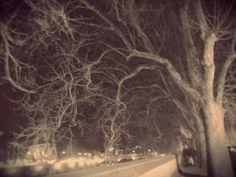 #Tevere #Roma #Night