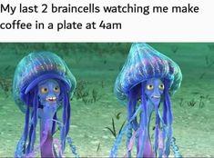 Funny Relatable Memes, Funny Jokes, Hilarious, Wtf Funny, Work Memes, Work Humor, Stupid Memes, Dankest Memes, Funny Images