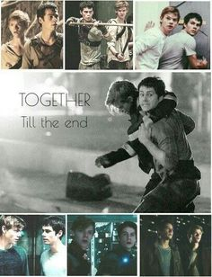 Thomas and Newt Together till the end - tmr ♥️ Maze Runner Quotes, Maze Runner Funny, Maze Runner Trilogy, Maze Runner Thomas, Maze Runner The Scorch, Maze Runner Cast, Maze Runner Movie, Maze Runner Series, Movies And Series