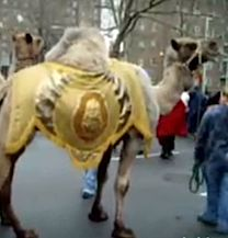 Three Kings Day Parade and Celebrations for NYC Kids 2014