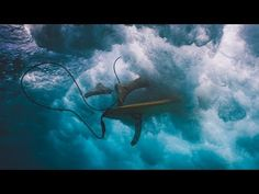 (8) Jeremy Loops - Waves (Official Music Video) - YouTube