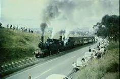 Australian steam locomotive Pansy - Google Search Farewelling the last train to run on the Camden line on Jan.1/1963. Climbing Kenny Hill betwen Campbelltown & Camden. Rail Transport, Jan 1, Steam Engine, Steam Locomotive, Camden, Cool Eyes, Pansies, Family History, Climbing