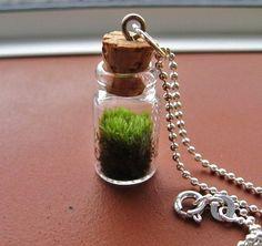 a garden in a bottle, a tiny bottle