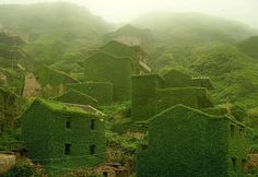 Nature swallowed an abandoned Chinese Fishing Village