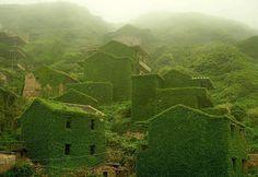 Nature swallowed an abandoned Chinese Fishing Village