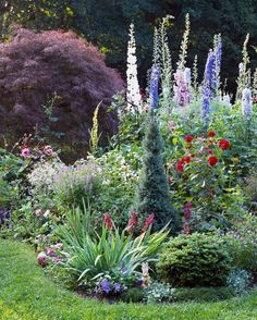 6 Steps to a No-Work Cottage Garden cottage garden with various heights of flow… - Backyard Garden Inspiration Cottage Garden Plants, Garden Shrubs, Shade Garden, Backyard Cottage, Herb Garden, Garden Pots, Garden Ideas Uk, Garden Inspiration, Design Inspiration
