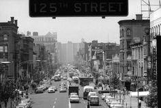 New Yorker Rassenunruhen von 1964: Kampf gegen die Unterdrückung