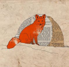 lovely fox collage