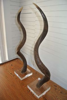 Pair of African Kudu Horns Mounted on Acrylic Lucite Base | From a unique collection of antique and modern animal sculptures at http://www.1stdibs.com/furniture/more-furniture-collectibles/animal-sculptures/